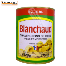CHAMPIGNONS BLANCHAUD 2920G-3